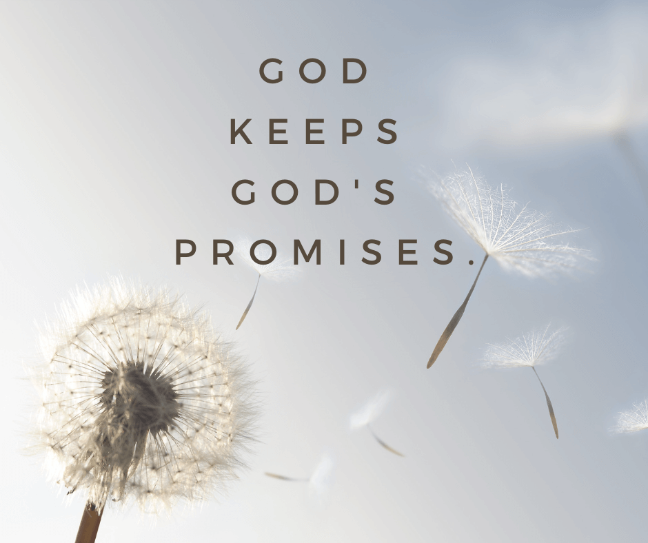 A dandelion letting go of its petals, with a quote about God keeping promises.